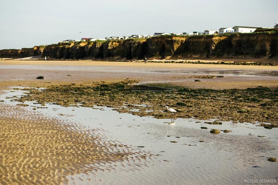 seance-engagement-bord-mer-plage-luc-sur-mer_0005.jpg