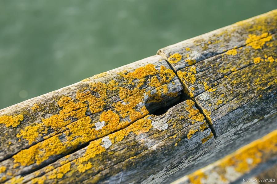 seance-engagement-bord-mer-plage-luc-sur-mer_0026.jpg