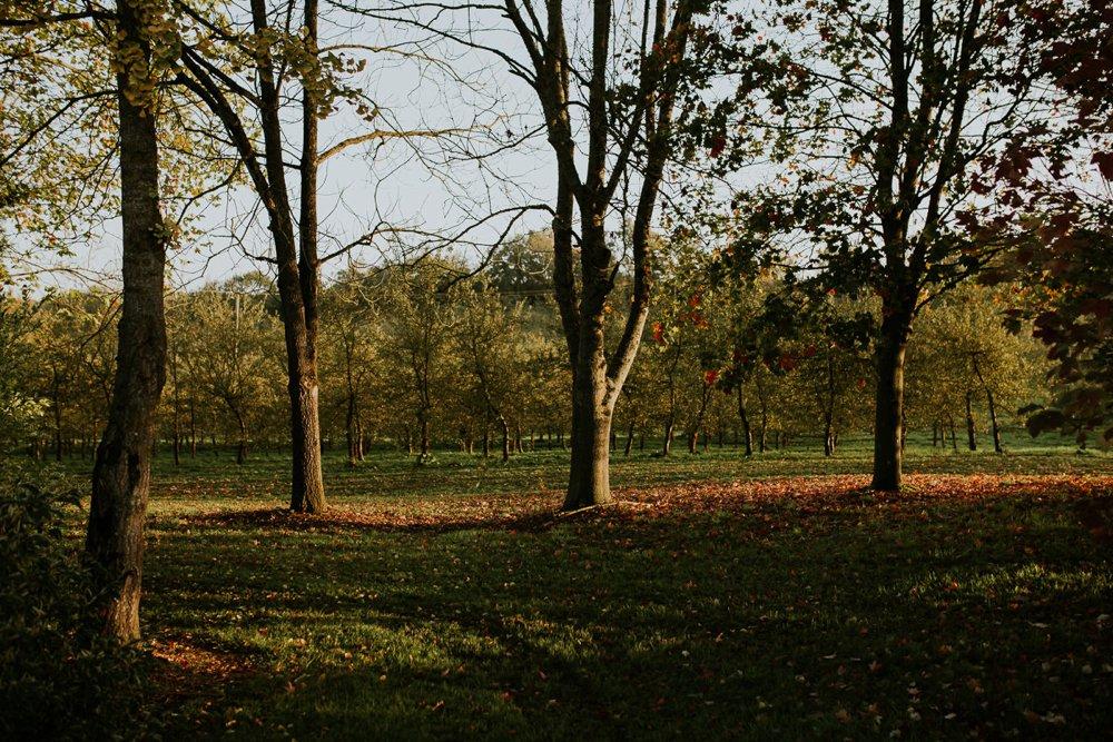 mariage-automne-jardins-pays-d-auge-cambremer-livarot_0002.jpg