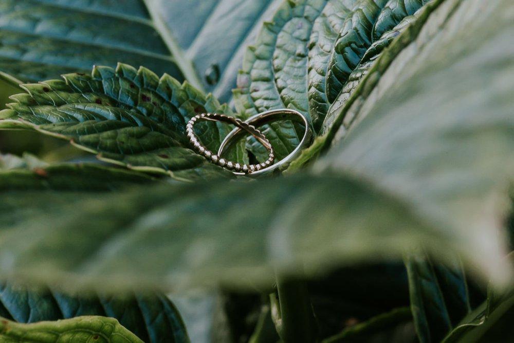 mariage-automne-jardins-pays-d-auge-cambremer-livarot_0007.jpg