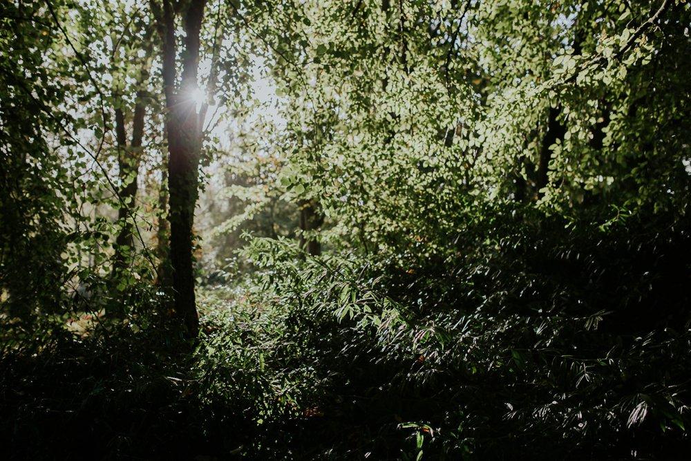 mariage-automne-jardins-pays-d-auge-cambremer-livarot_0011.jpg