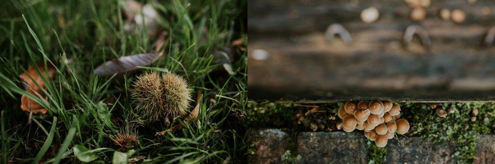 mariage-automne-jardins-pays-d-auge-cambremer-livarot_0015.jpg