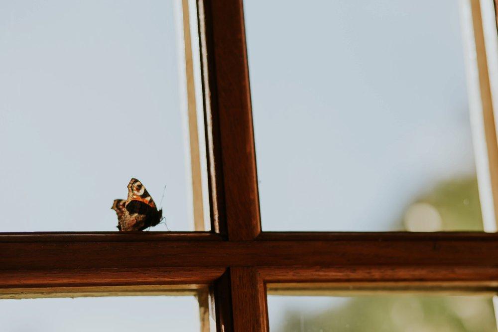 mariage-automne-jardins-pays-d-auge-cambremer-livarot_0025.jpg