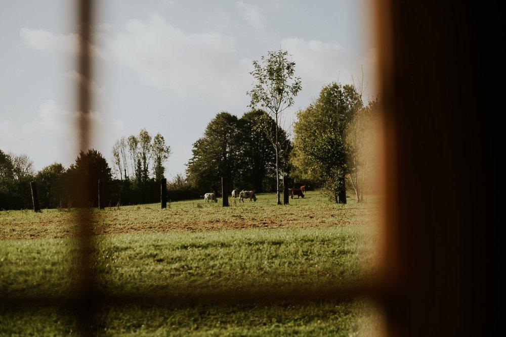 mariage-automne-jardins-pays-d-auge-cambremer-livarot_0026.jpg